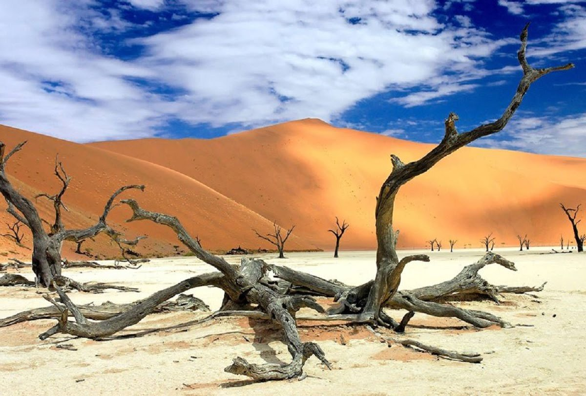 an small article about world's largest dessert,inspirational story in hindi,inspirational story in hindi for students, motivational stories in hindi for employees, best inspirational story in hindi, motivational stories in hindi language